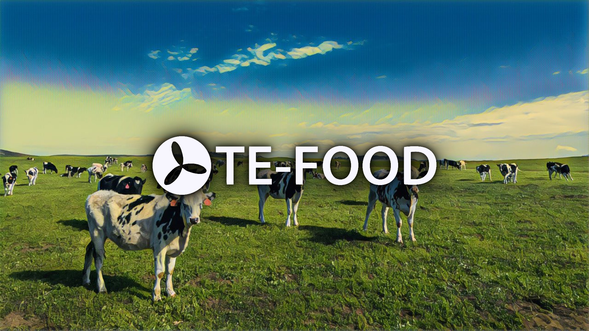 TE-FOOD Food Traceability Interview Part 2