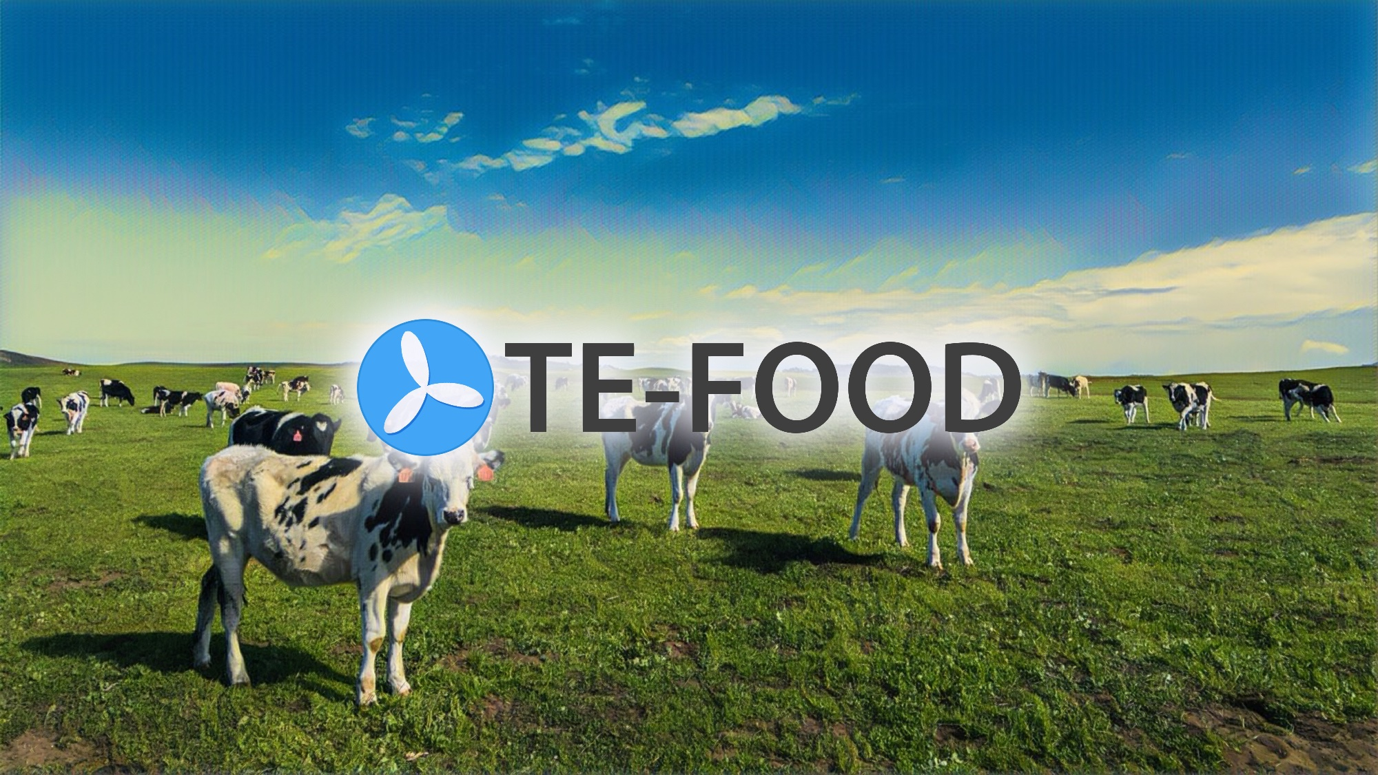 TE-FOOD Joins the UN Sustainable Food Systems Programme