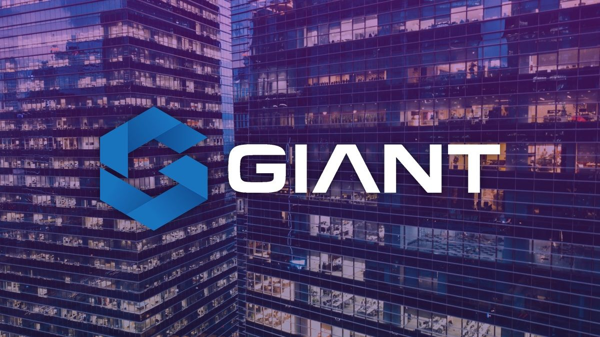 Giant Project Releases Quarterly Reports for 2019